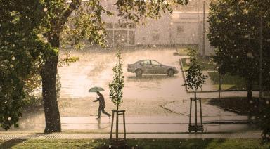 hail damage insurance claim car